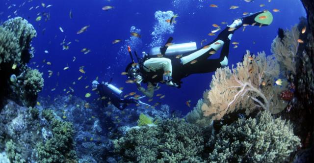 diving 1024x531 640x480 - HOI AN - CHAM ISLANDS - HOI AN/ 1 DAY