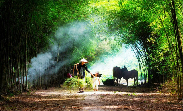 b2ap3 amp Life in Vietnamese countryside 1 640x480 - HALONG BAY SHORE EXCURSIONS